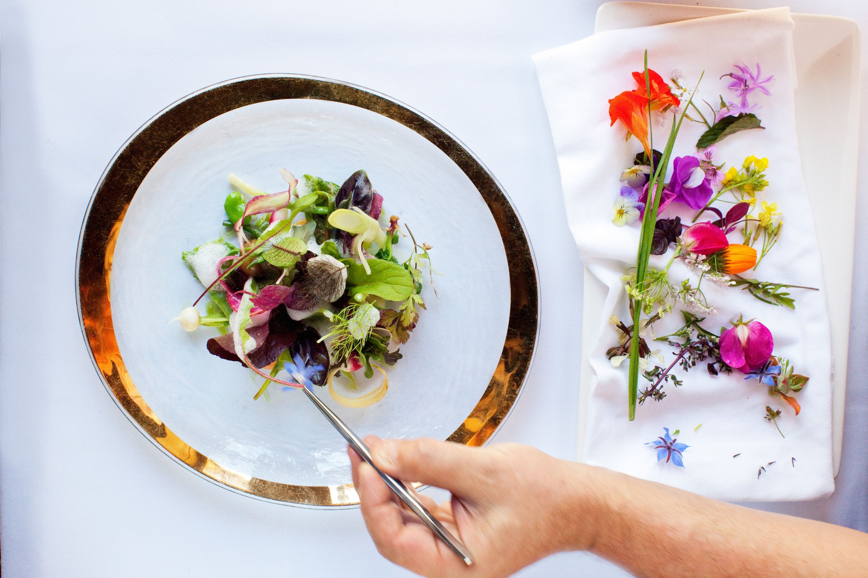 The Art of Plating - In vier Schritten zum kunstvoll angerichteten Teller